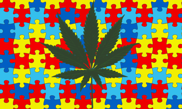 Medical Cannabis Treatment for Autism to Begin Clinical Trials