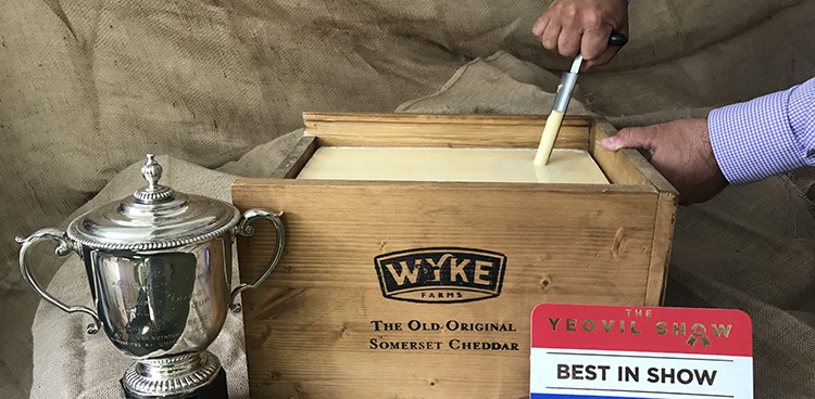Image result for wyke farms cheddar