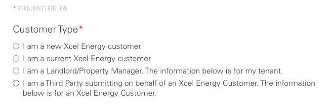 xcel energy application form