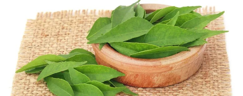 Curry leaves help to stabilize blood glucose levels and impact carbohydrate metabolism