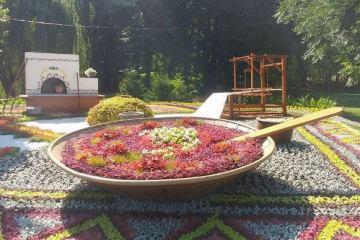 Виставка квітів на Співочому полі