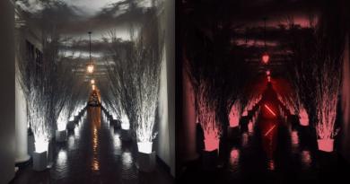 Білий дім, прикраси до Різдва