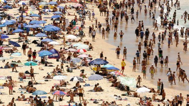 Сідней потерпає від 47-градусної спеки
