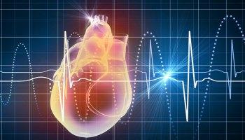Вчені уперше виростити людське міні-серце