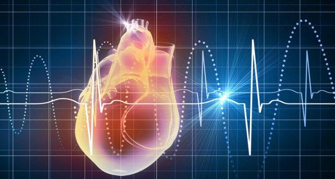 Скільки скорочень серця вділила вам доля
