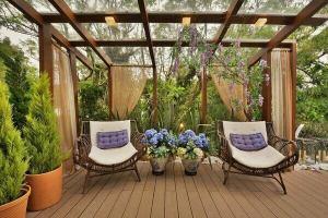 рослини для тераси на дачі