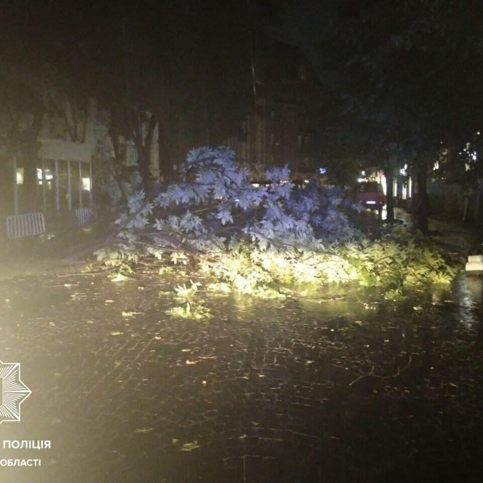 Буревій у Львові: загинули двоє молодих людей