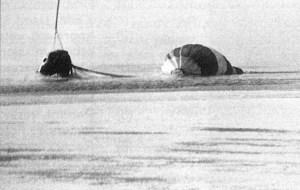 """""""Союз-23"""": Як два космонавти ледве не загинули після повернення на Землю"""