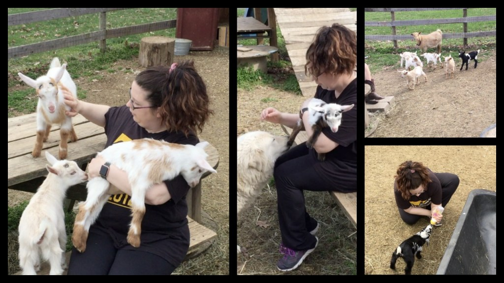 Cuddling with Baby Goats