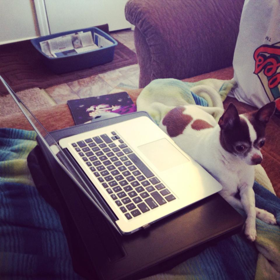 digger sitting in from on the laptop