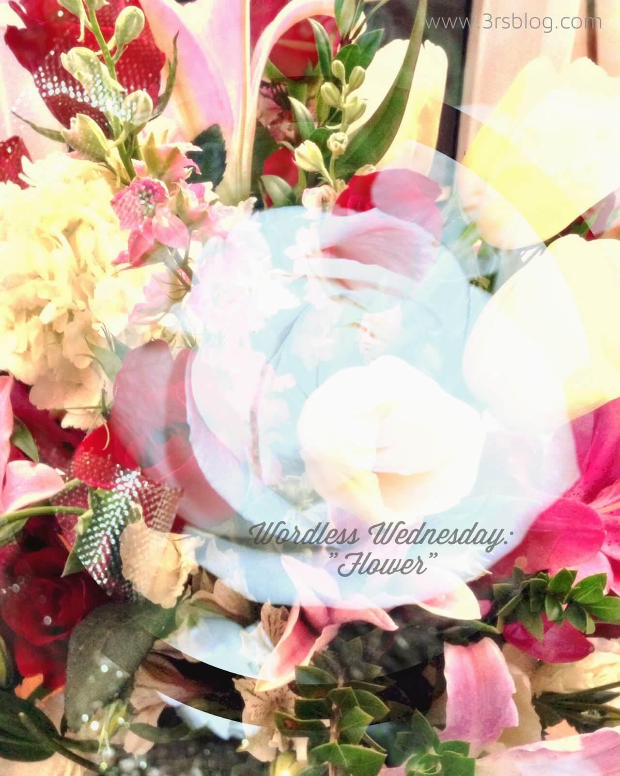 "Wordless Wednesday: ""Flower"""