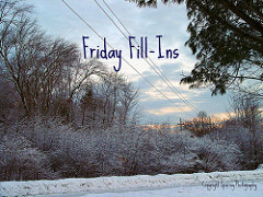 Friday Fill-ins…and fillin' y'all in!