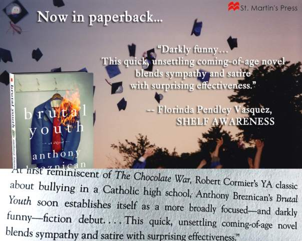 blurb paperback brutal youth breznican