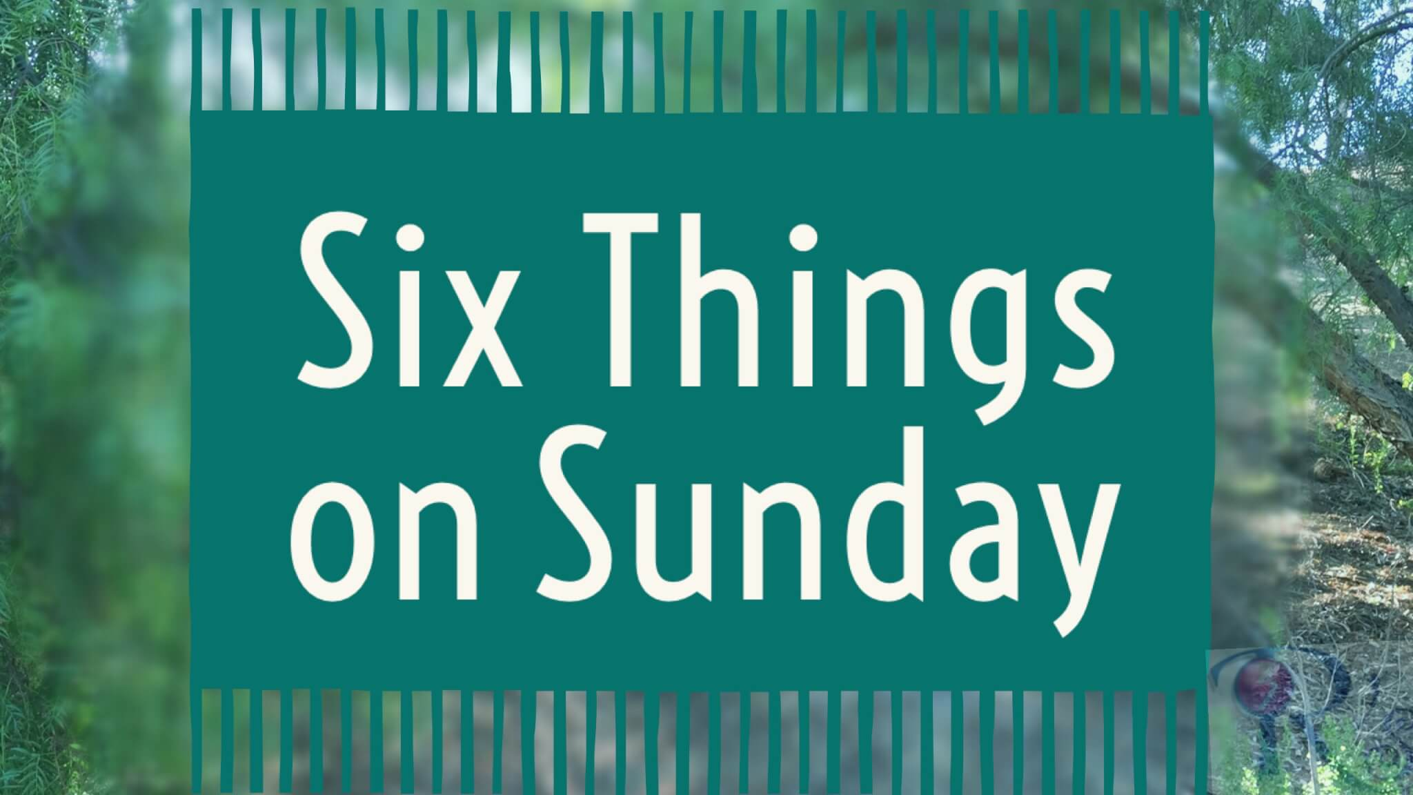 Six Things on Sunday [Show and Tell]