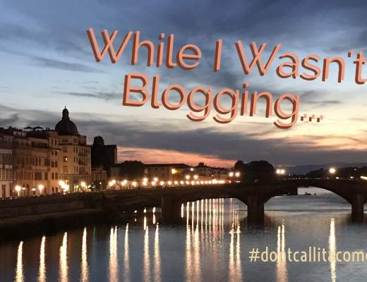 While I Wasn't Blogging: A Recap #dontcallitacomeback
