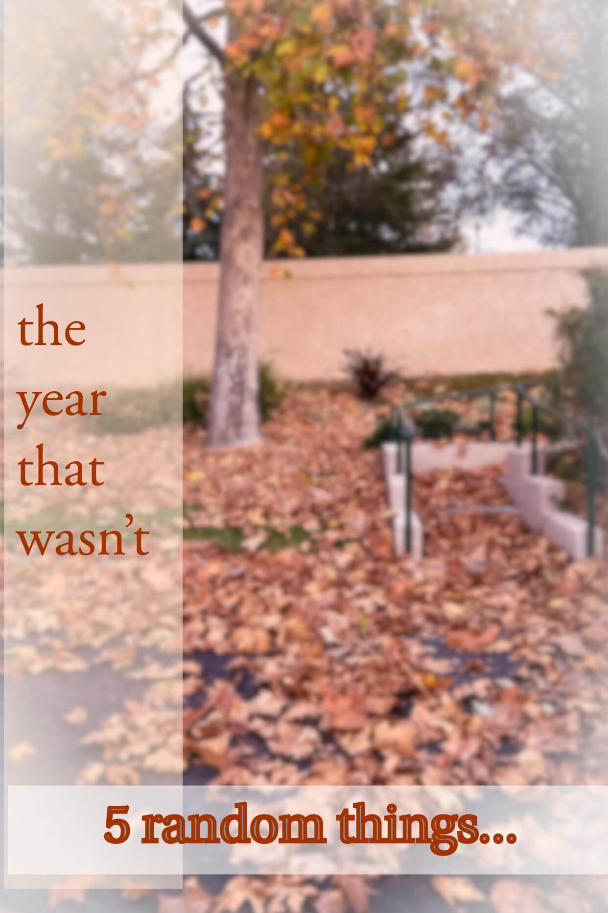 the year that wasnt random