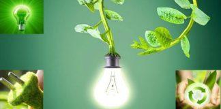 تحويل النباتات إلى بطاريات تعتمد على المياه والتربة لإنتاج الطاقة الكهربائية
