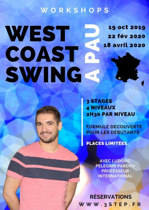 Stage de West Coast Swing avec Ludo