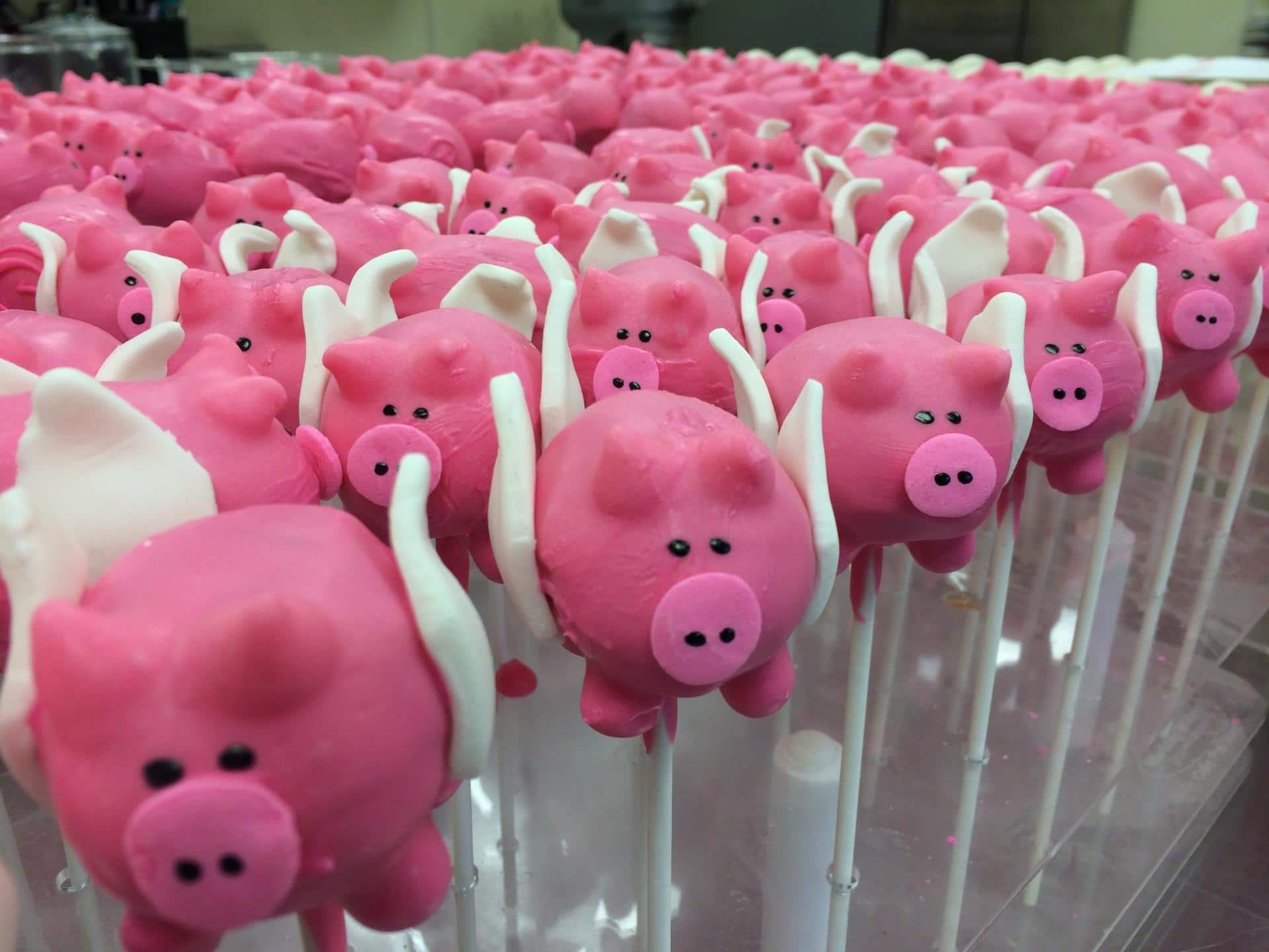 Image result for flying pig cake pops