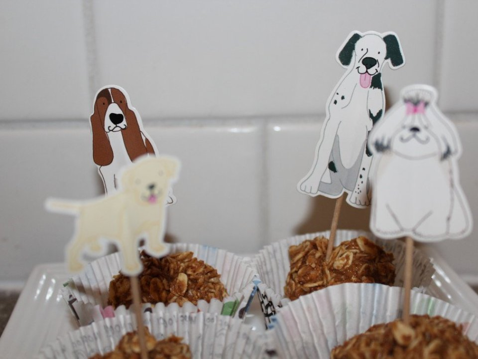 Dog Treats: 3ten.ca