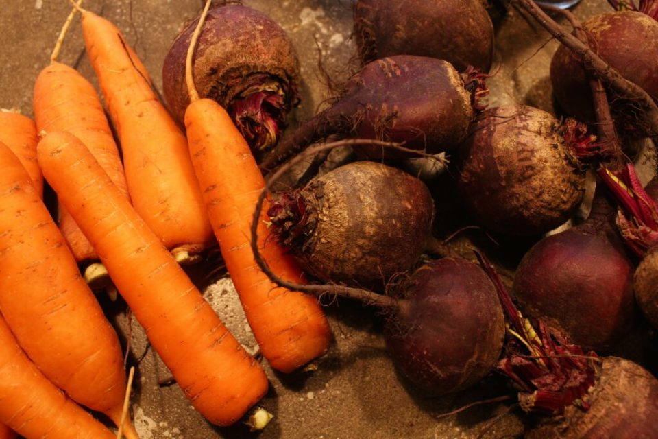 Picked Beets and Carrots: 3ten.ca