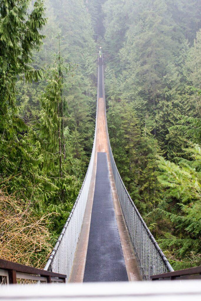 Capilano Suspension Bridge Park: 3ten.ca