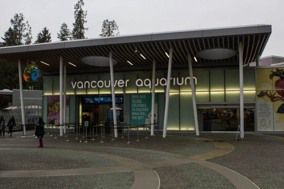 Vancouver Aquarium: 3ten.ca