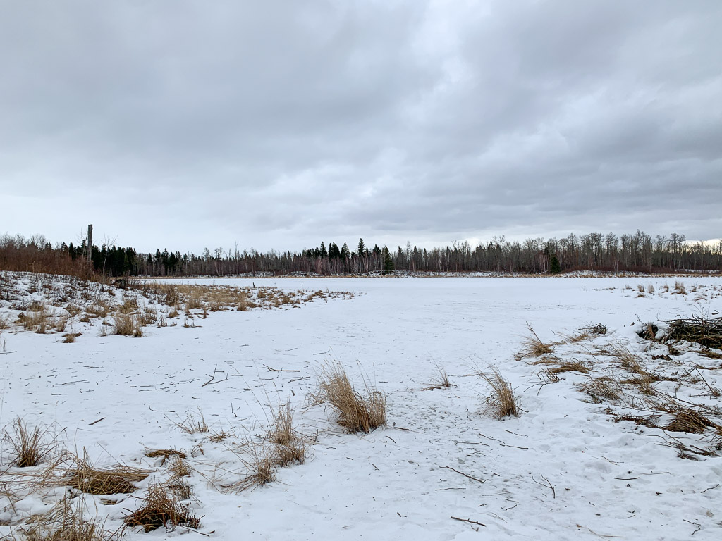 Elk Island Winter Hike: 3ten.ca