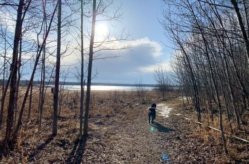Miquelon Lake Hike: 3ten.ca