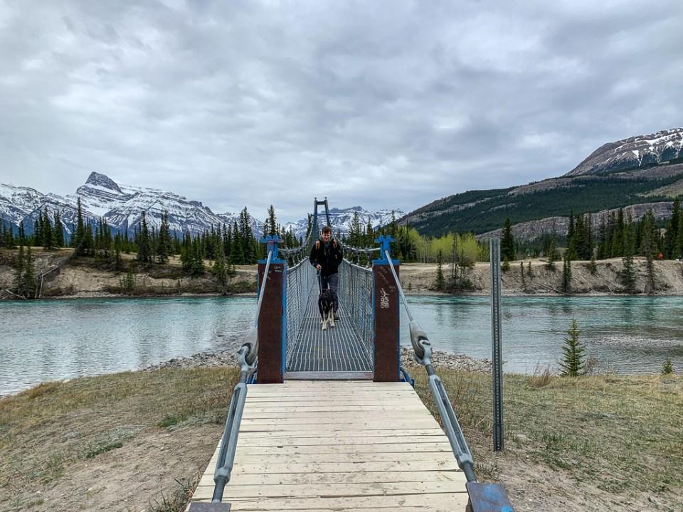 Daphne on a Hike: 3ten.ca