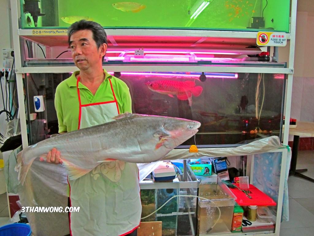 Chef Keong holding a fresh water patin fish (catfish)