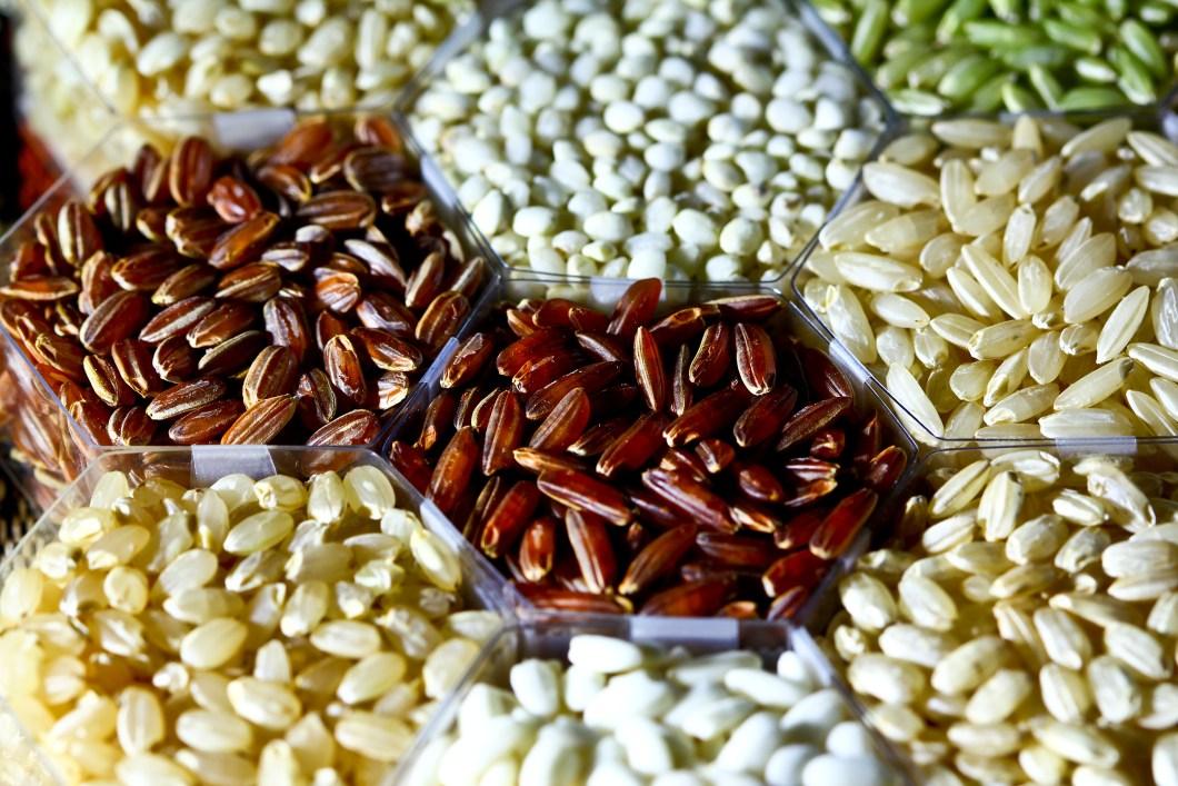 rice seed nasi
