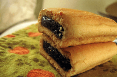 Boston Fun Facts: Fig Newtons named after the town Newton
