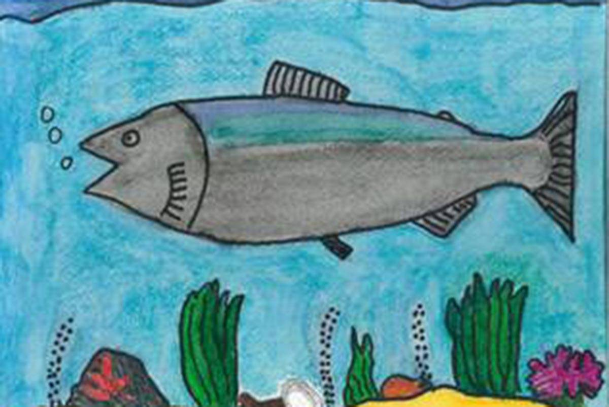 Forest Service Fishing For Student Art Of Fish In Alaska
