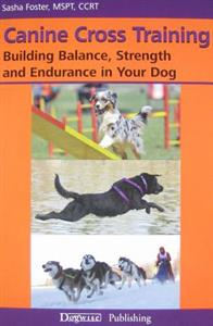 canine-cross-training-building-balance-strength-and-endurance-in-your-dog