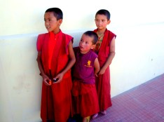 Young monks at the Diskit Monastery, some of them come all the way from Tibet to learn here