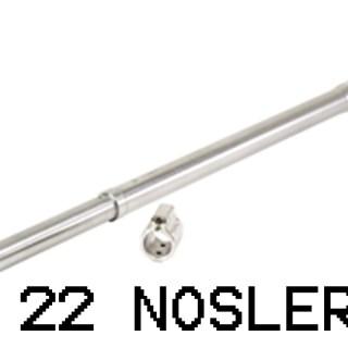 22 Nosler