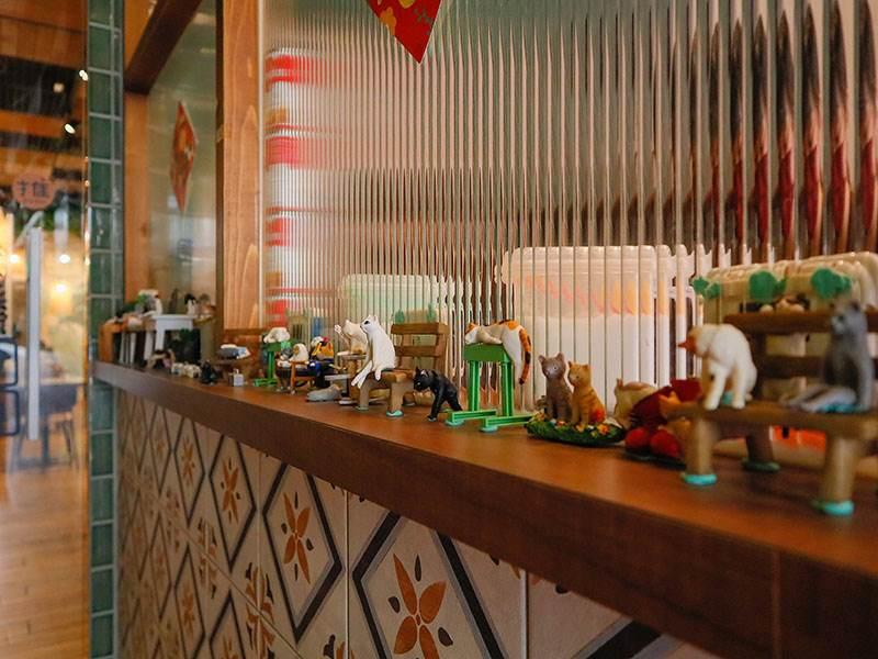 泰貓了,泰式料理,新竹泰國料理