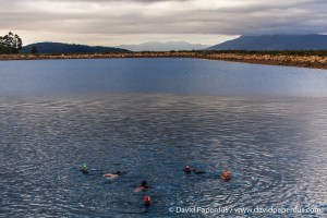Open water swim 9 December