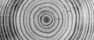 Holz Material Schiebetür