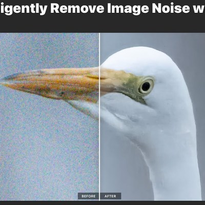 ON1 NoNoise AI announced: Promises fastest and best noise reduction on the market