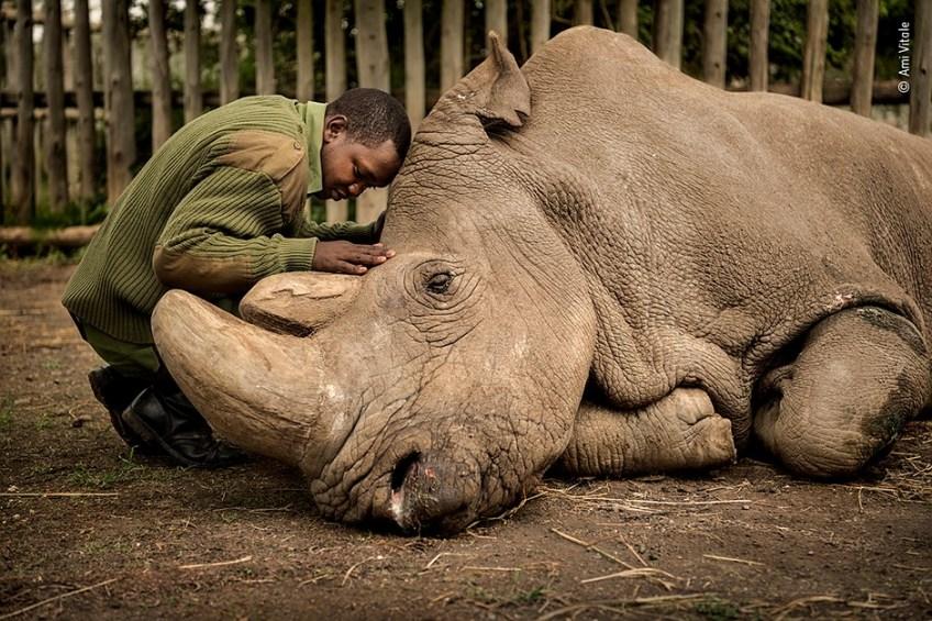 Slideshow: Wildlife Photographer of the Year People's Choice Award winners