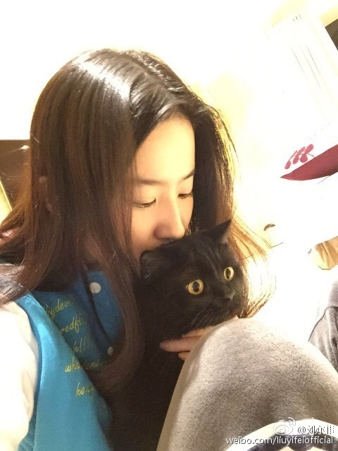 Crystal Liu Yifei with her shocked cat