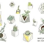 Wallpaper Plants Concrete Geometric