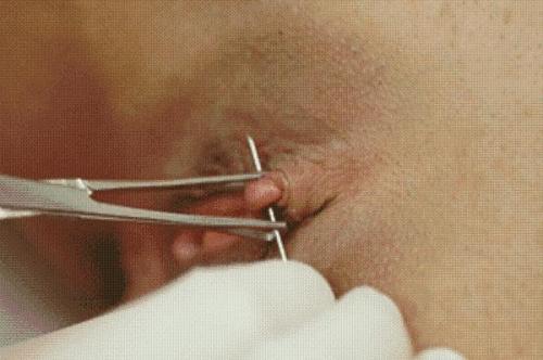 clit hood piercing tumblr