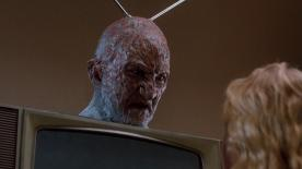 I vote that Samsung uses this image in their next ad for a Smart TV. Freddy with television antennas on his head may be the only thing a little freakier than Samsung's products. The only thing is, Freddy really didn't care what we were saying..