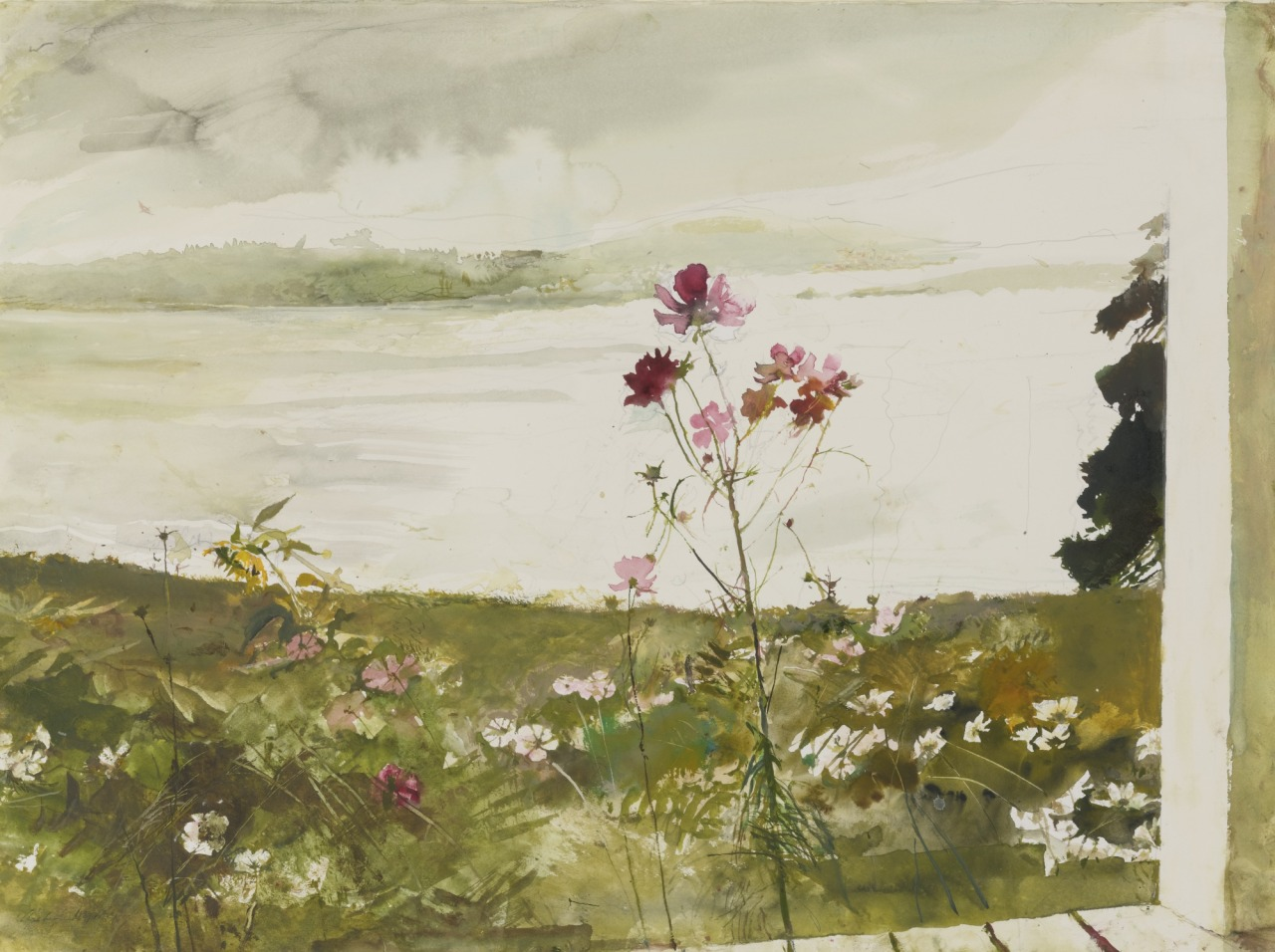 thusreluctant: Cosmos by Andrew Wyeth