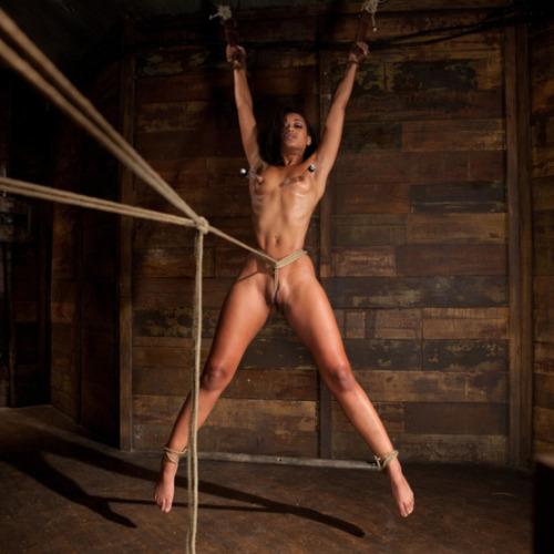 tumblr bdsm rope