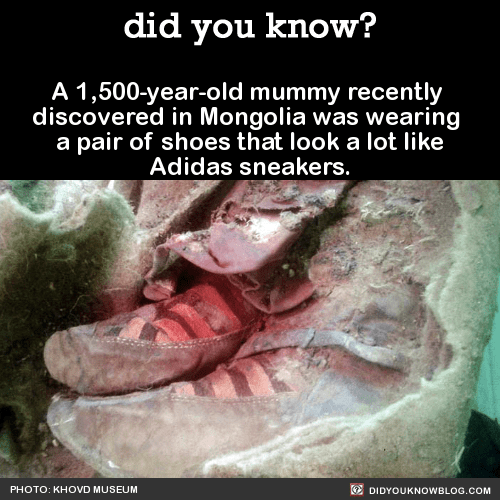 A 1,500-year-old mummy recently  discovered in Mongolia was wearing  a pair of shoes that look a lot like Adidas sneakers.   Source
