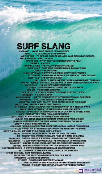 Examples of surf slang